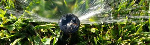 irrigation-
